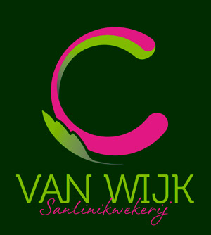 C. van Wijk
